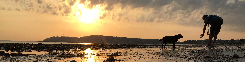 Der Strand im Sonnenuntergang Barneville Carteret mit Sven und Milla